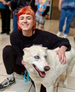 adopt dog coconino humane